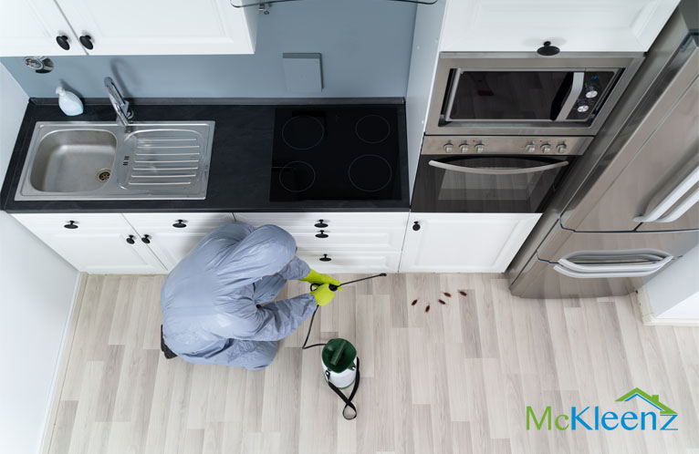 4 MAIN REASONS TO HAVE PROFESSIONAL PEST CONTROL  SPECIALISTS HANDLE YOUR HOME