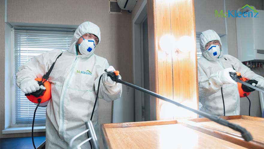 HOW TO SELECT A RELIABLE PEST CONTROL  TEAM?